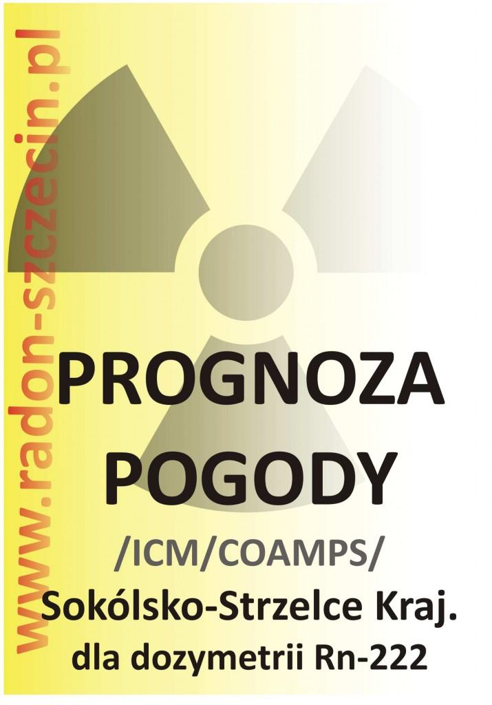 Prognoza Sokolsko Strzelce Krajenskie